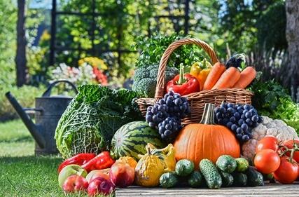 Comment ne pas faire manger des légumes à vos enfants ?!
