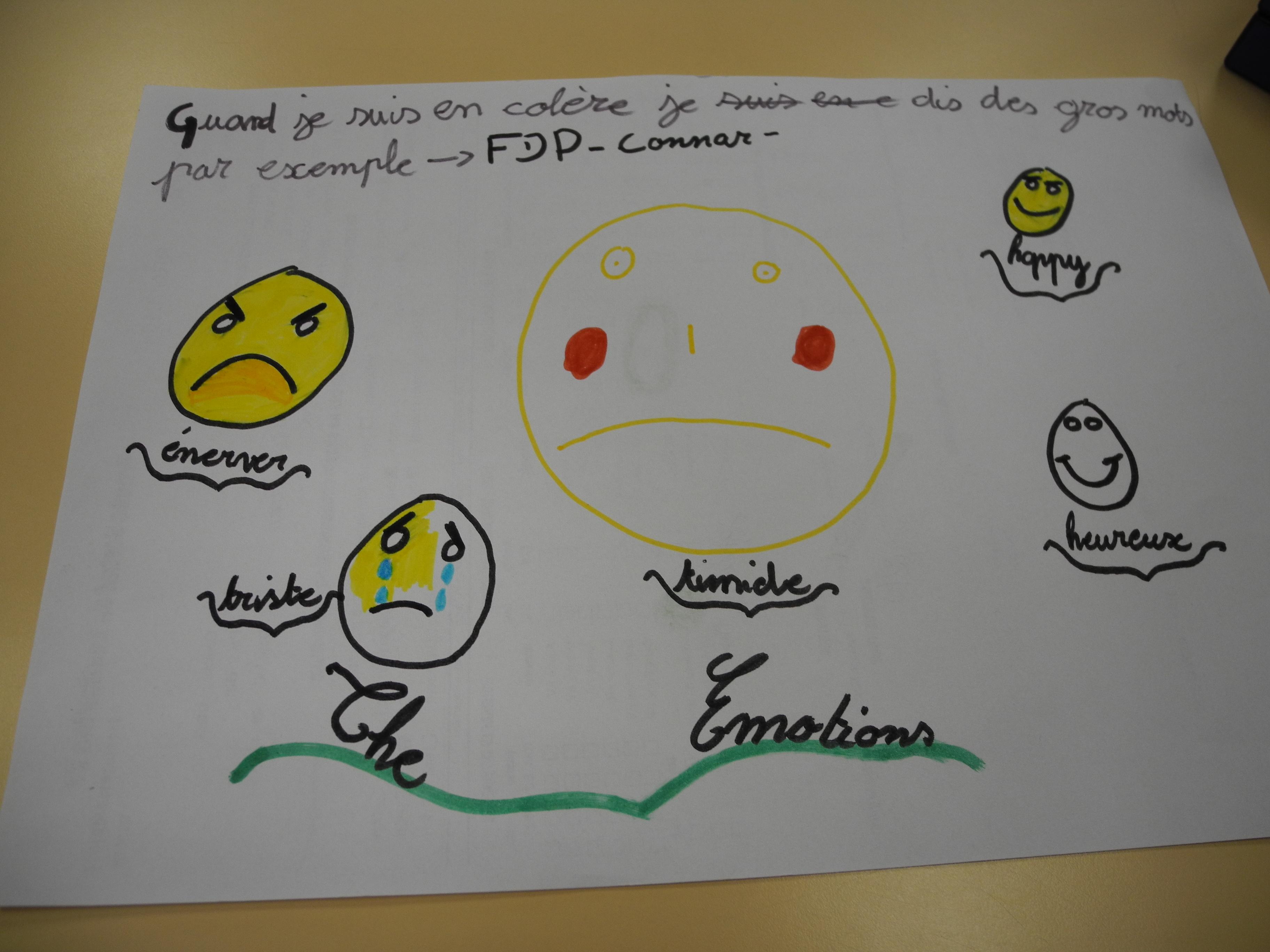 Les émotions : facteurs d'échecs ou de réussites scolaires ?