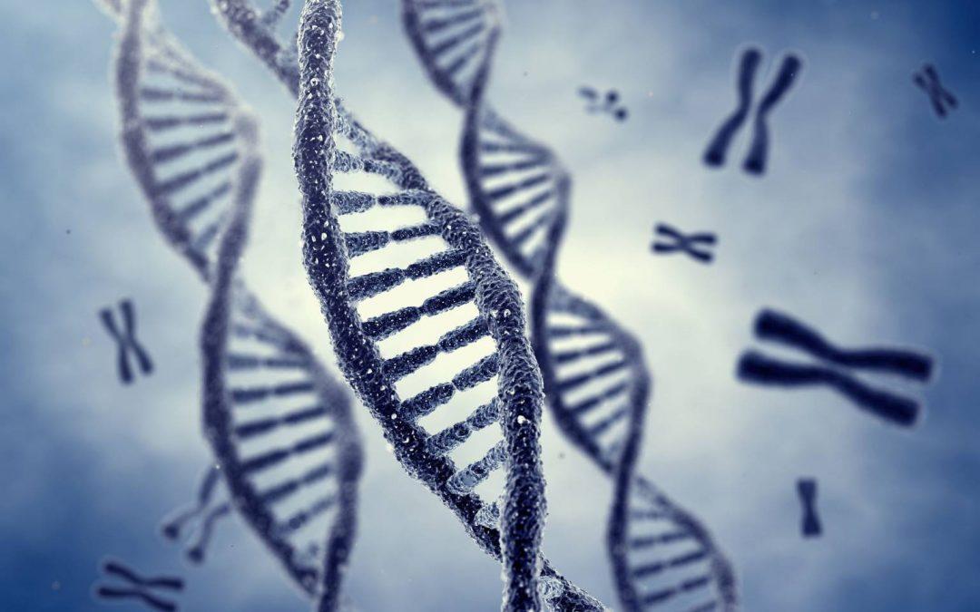 """La maltraitance des enfants laisserait des """"cicatrices moléculaires"""" dans leur ADN"""