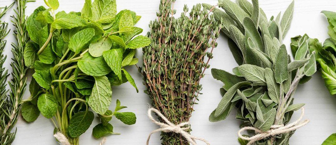 Remèdes de grands-mères,Se soigner par les plantes
